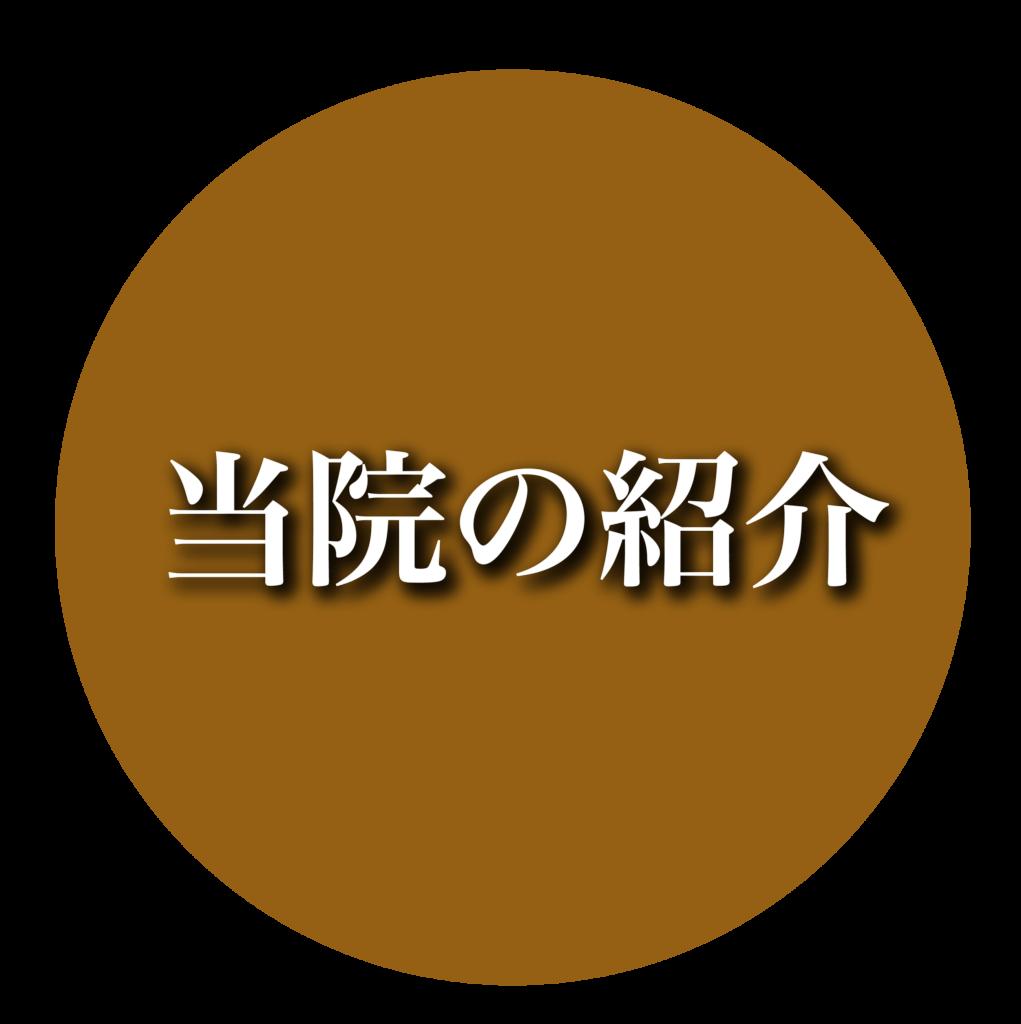 "touin アートボード 1 1021x1024 - <span style=""font-family: serif;"">当院のご紹介"